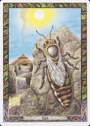 druid-animal-oracle-bee